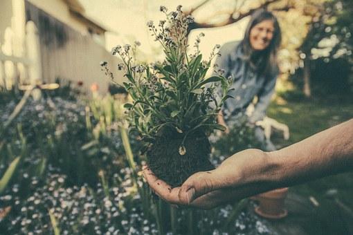 Een nieuwe tuin dankzij deze bespaartips!